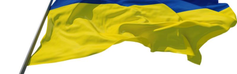 Флаги Украины всех видов и размеров.